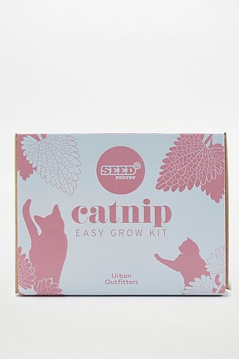 catnip-easy-grow-kit
