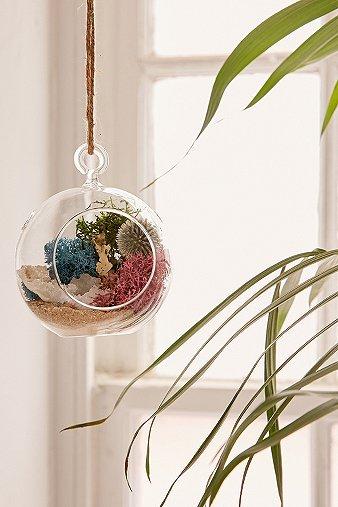 diy-hanging-geode-terrarium