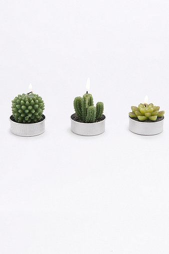 succulent-tealight-candles