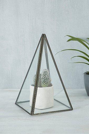 Image du produit Terrarium pyramide