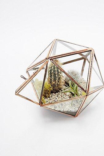 urban-grow-copper-star-terrarium-planter