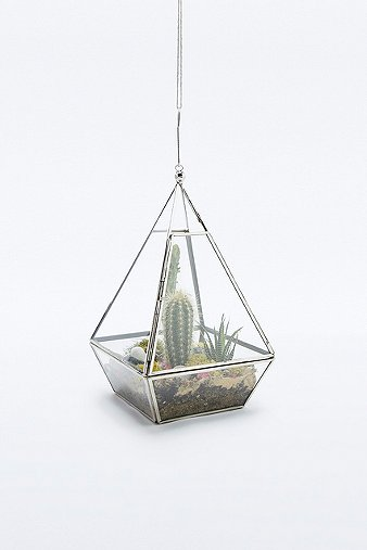 Image du produit Urban Grow - Terrarium pyramide