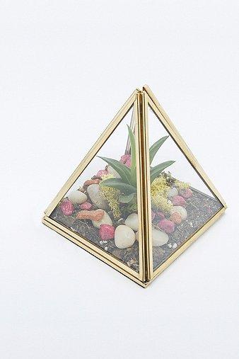 Image du produit Boîte pyramidale en verre