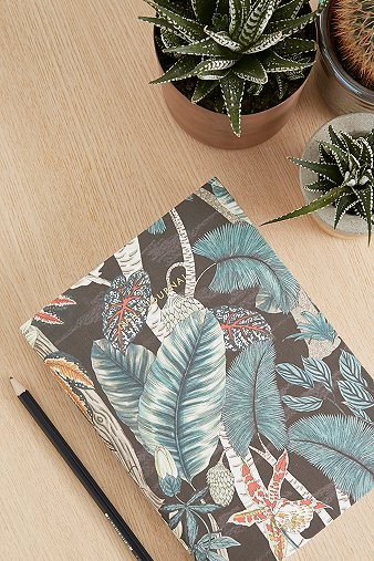 rainforest-daily-journal